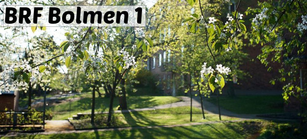 Bostadsrättsföreningen Bolmen1